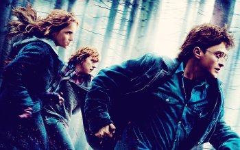 Movie - Harry Potter And The Deathly Hallows: Part 1 Wallpapers and Backgrounds ID : 205893