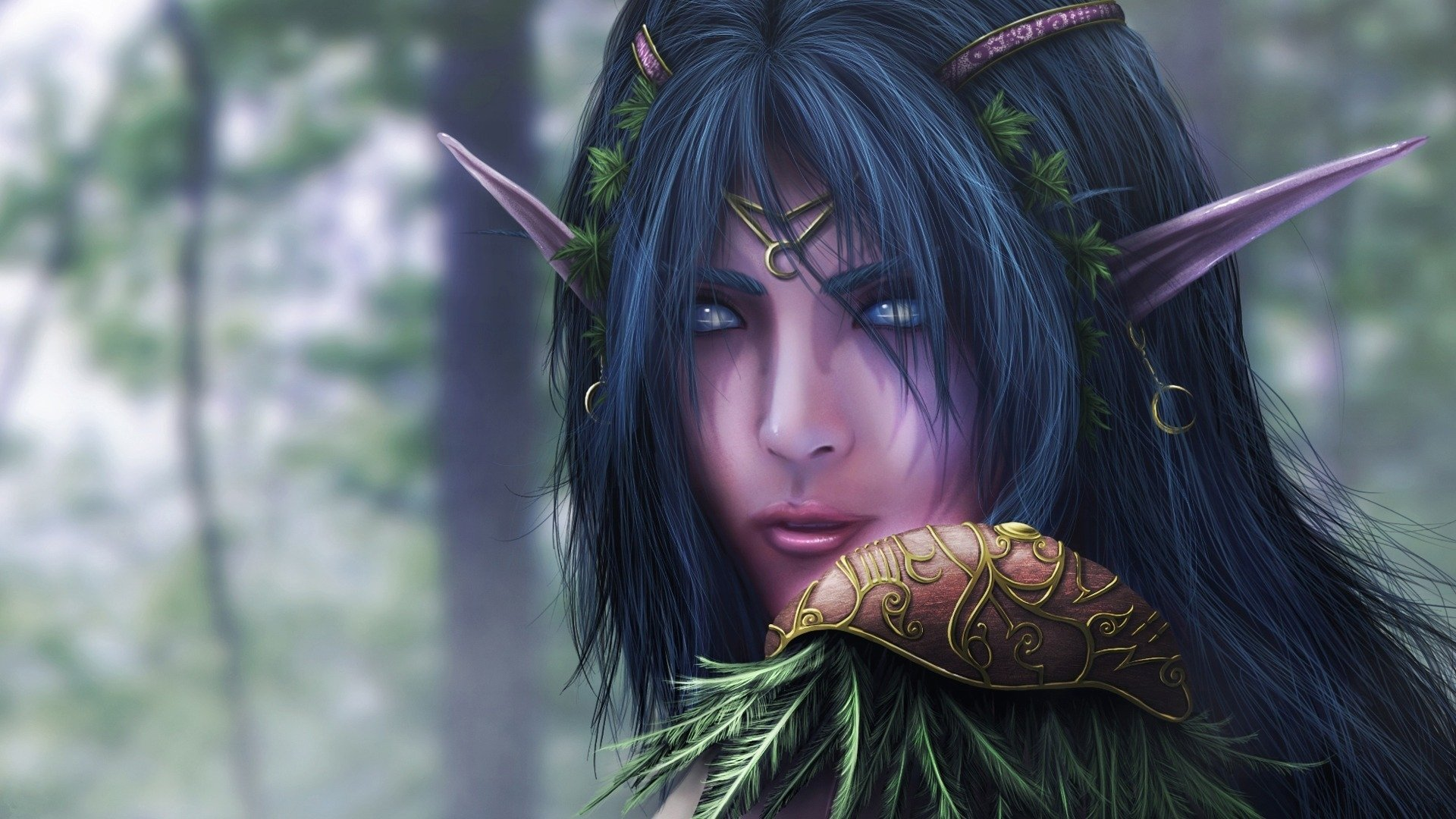 11 Night Elf Hd Wallpapers Background Images Wallpaper Abyss