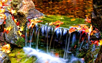 Earth - Autumn Wallpapers and Backgrounds ID : 209683