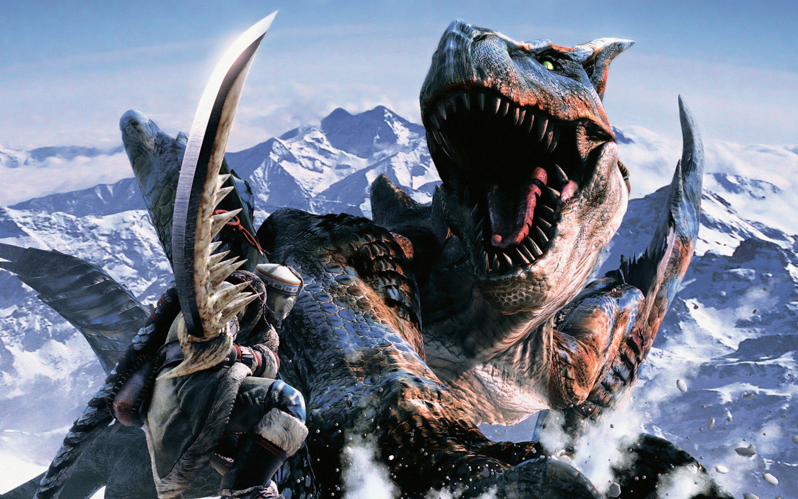 Video Game - Monster Hunter  Warrior Sword Fantasy Wallpaper
