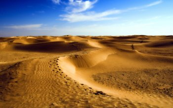 Earth - Desert Wallpapers and Backgrounds ID : 211603