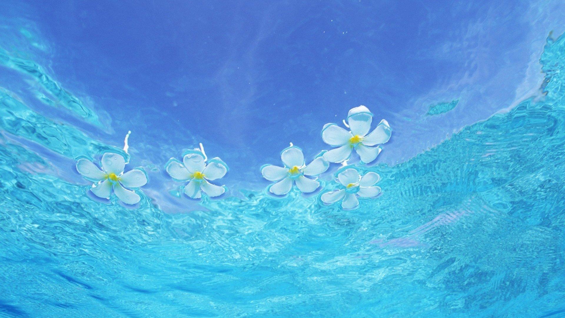 Earth - Water  Wallpaper