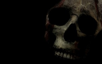 Dark - Skull Wallpapers and Backgrounds ID : 212723