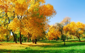 Photography - Autumn Wallpapers and Backgrounds ID : 220303