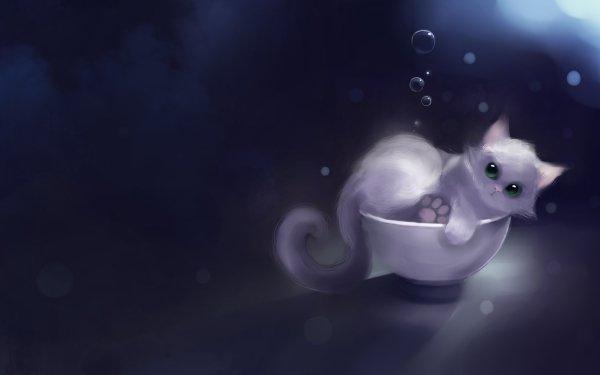 Animal Artistic Cat Kitten Bowl Cute HD Wallpaper   Background Image