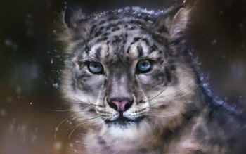 Artístico - Animalia Wallpapers and Backgrounds ID : 236673
