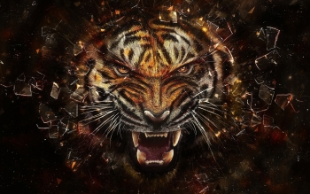 Artistic - Animal Wallpapers and Backgrounds ID : 237763