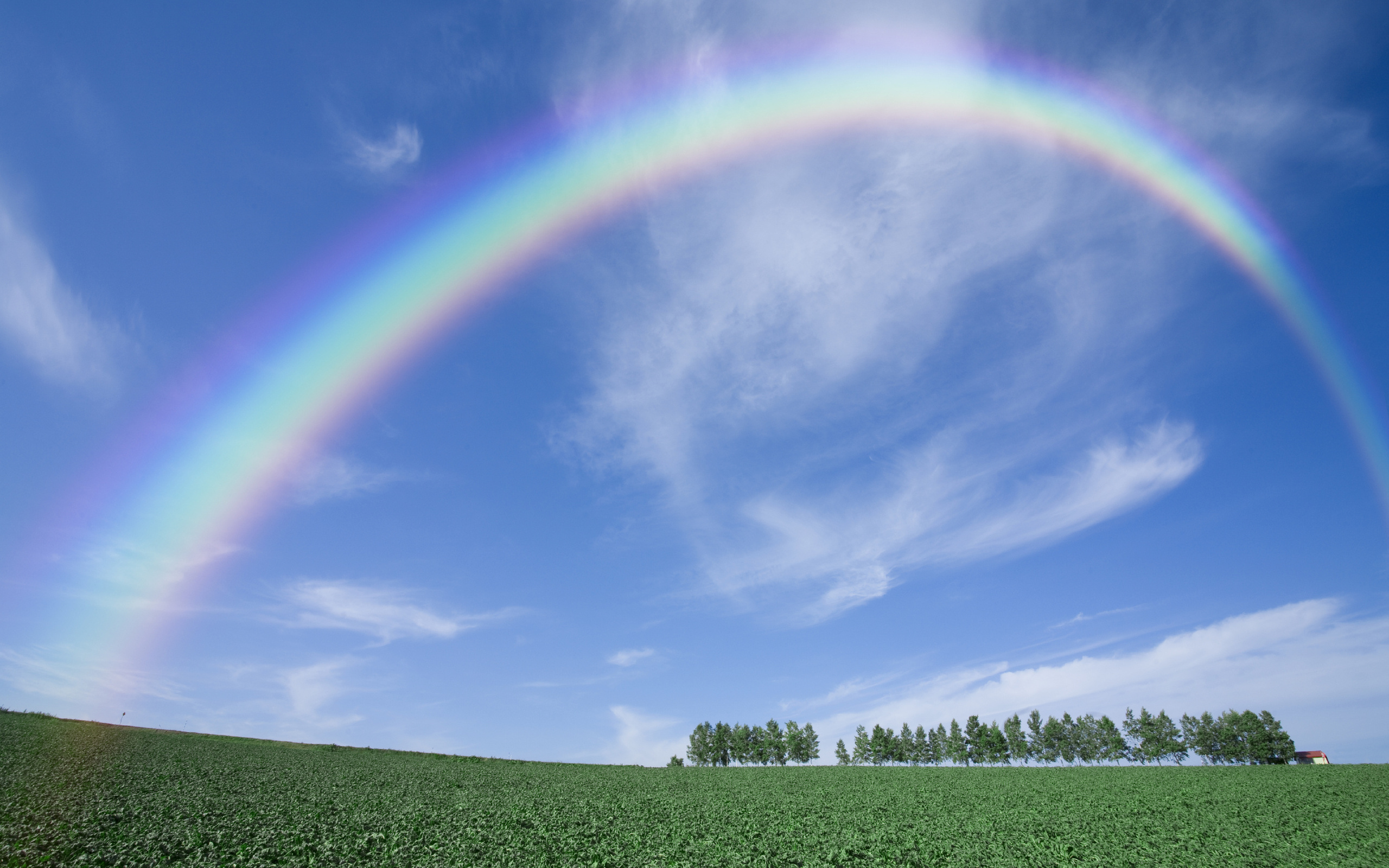 Rainbow HD Wallpaper | Background Image | 2560x1600 | ID ...