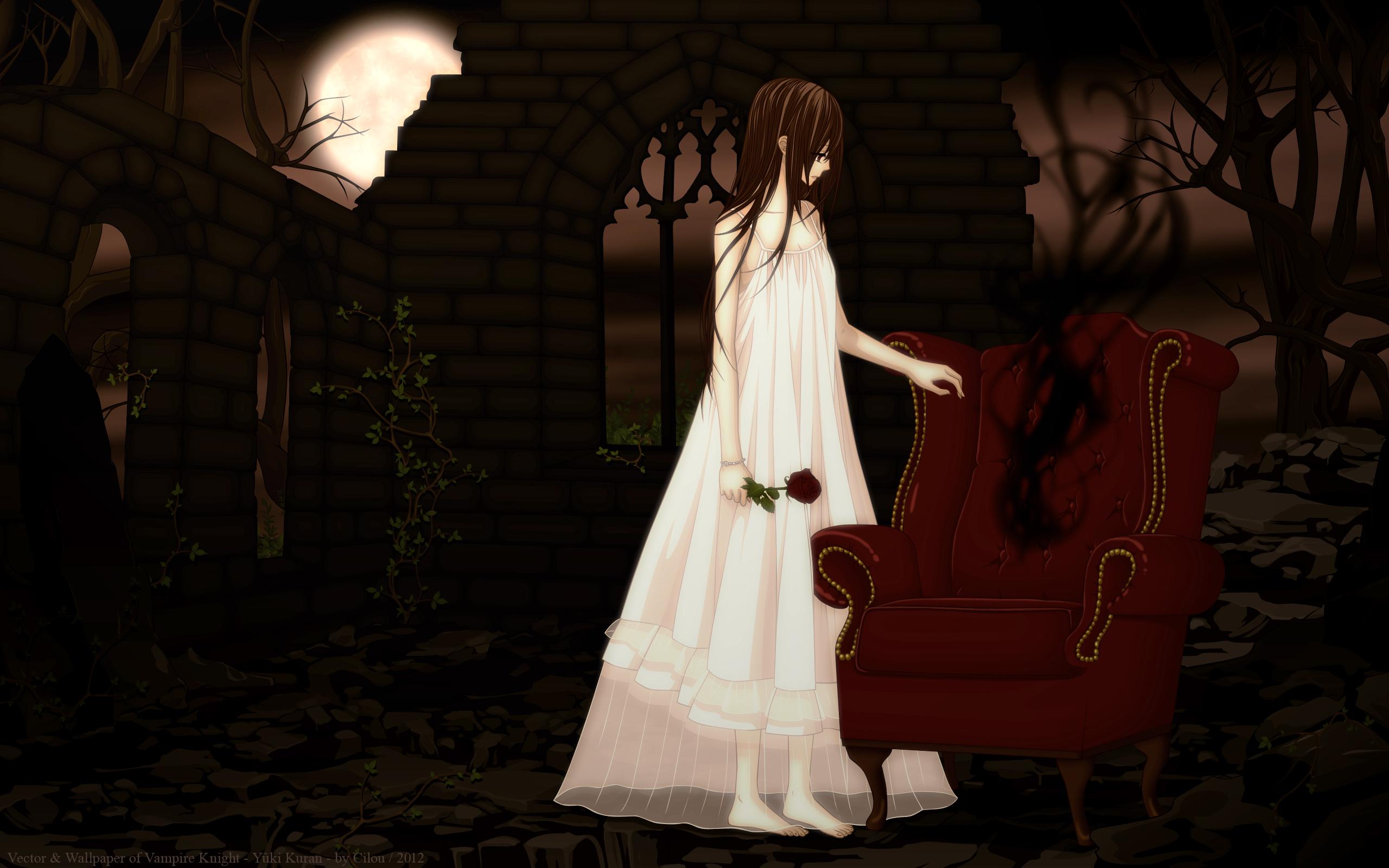 Vampire Knight Full HD...