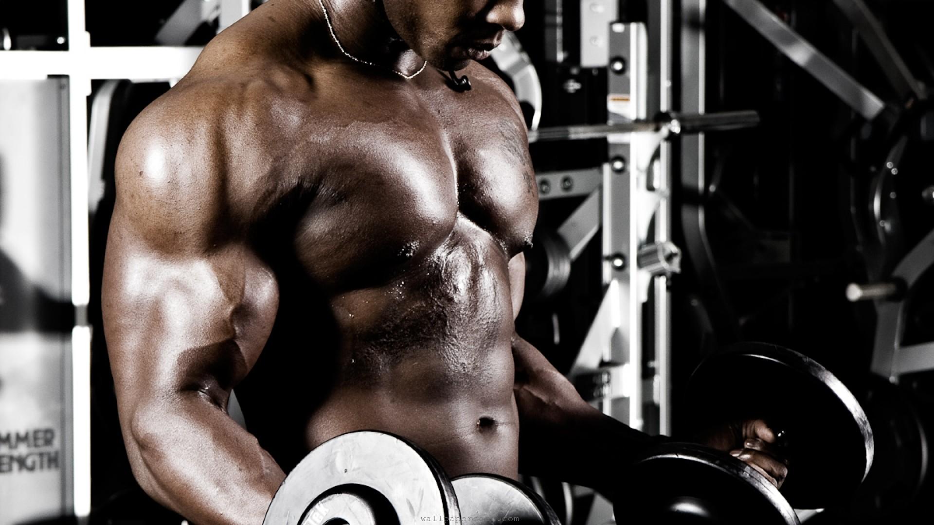 bodybuilding computer wallpapers desktop backgrounds