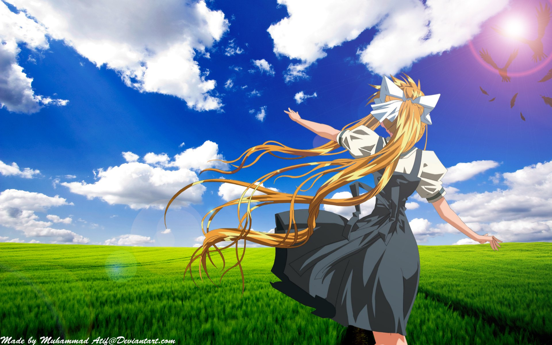 Wallpapers ID:251971