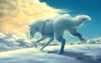 Animalia - Lobo Wallpapers and Backgrounds ID : 254771
