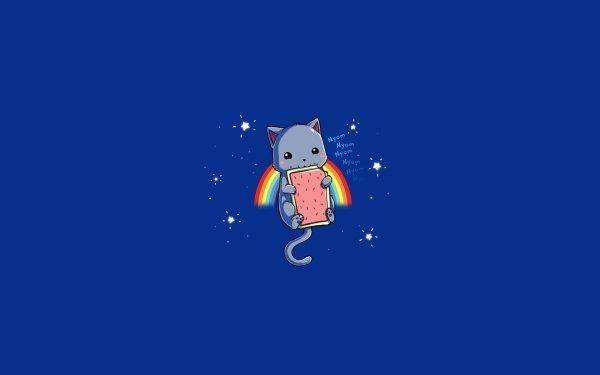 Humor Nyan Cat Rainbow Blue Meme HD Wallpaper | Background Image