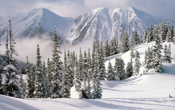 Aarde - Winter Wallpapers and Backgrounds ID : 258383