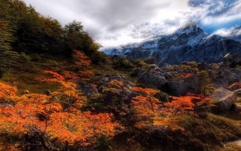 Earth - Autumn Wallpapers and Backgrounds ID : 262841