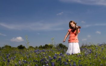 Music - Violin Wallpapers and Backgrounds ID : 265141