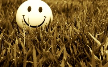 Humor - Smiley Wallpapers and Backgrounds ID : 266811