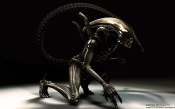 Movie - Alien Wallpapers and Backgrounds ID : 271771
