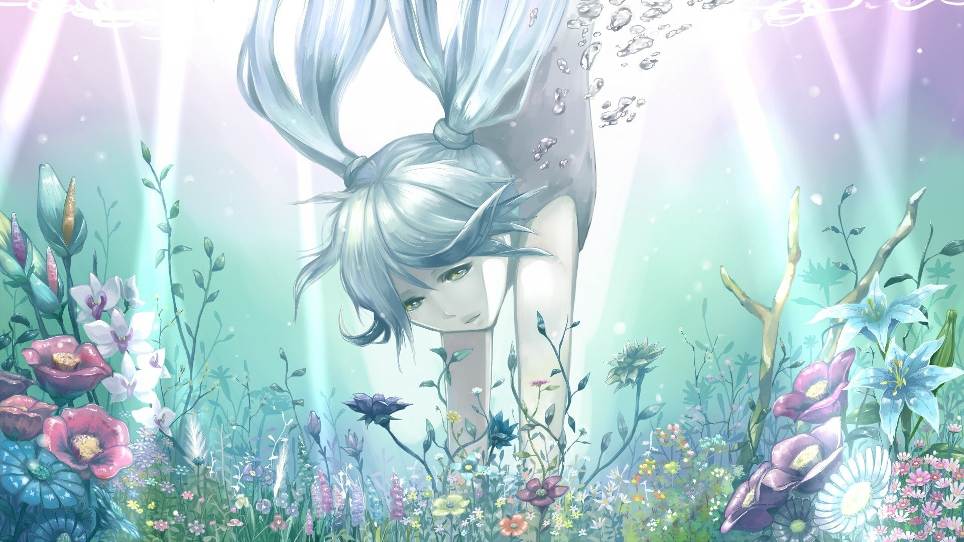 Wallpapers ID:275901