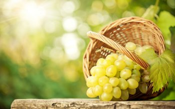 Food - Grapes Wallpapers and Backgrounds ID : 276643