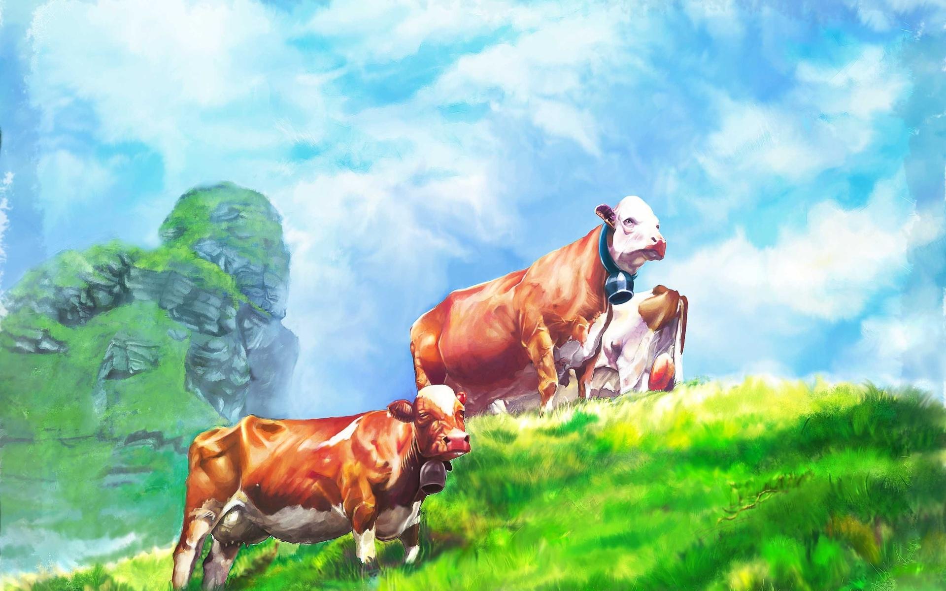 cow computer wallpapers desktop backgrounds 1920x1200