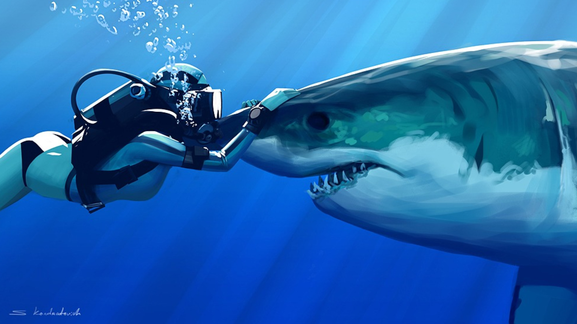 Alpha coders wallpaper abyss explore the collection sharks animal