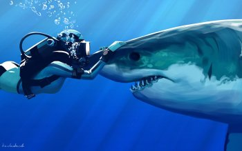 Animal - Shark Wallpapers and Backgrounds ID : 281761