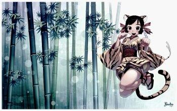 HD Wallpaper | Background ID:283843