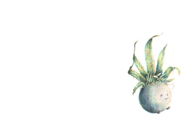 Video Game Pokémon Oddish HD Wallpaper   Background Image