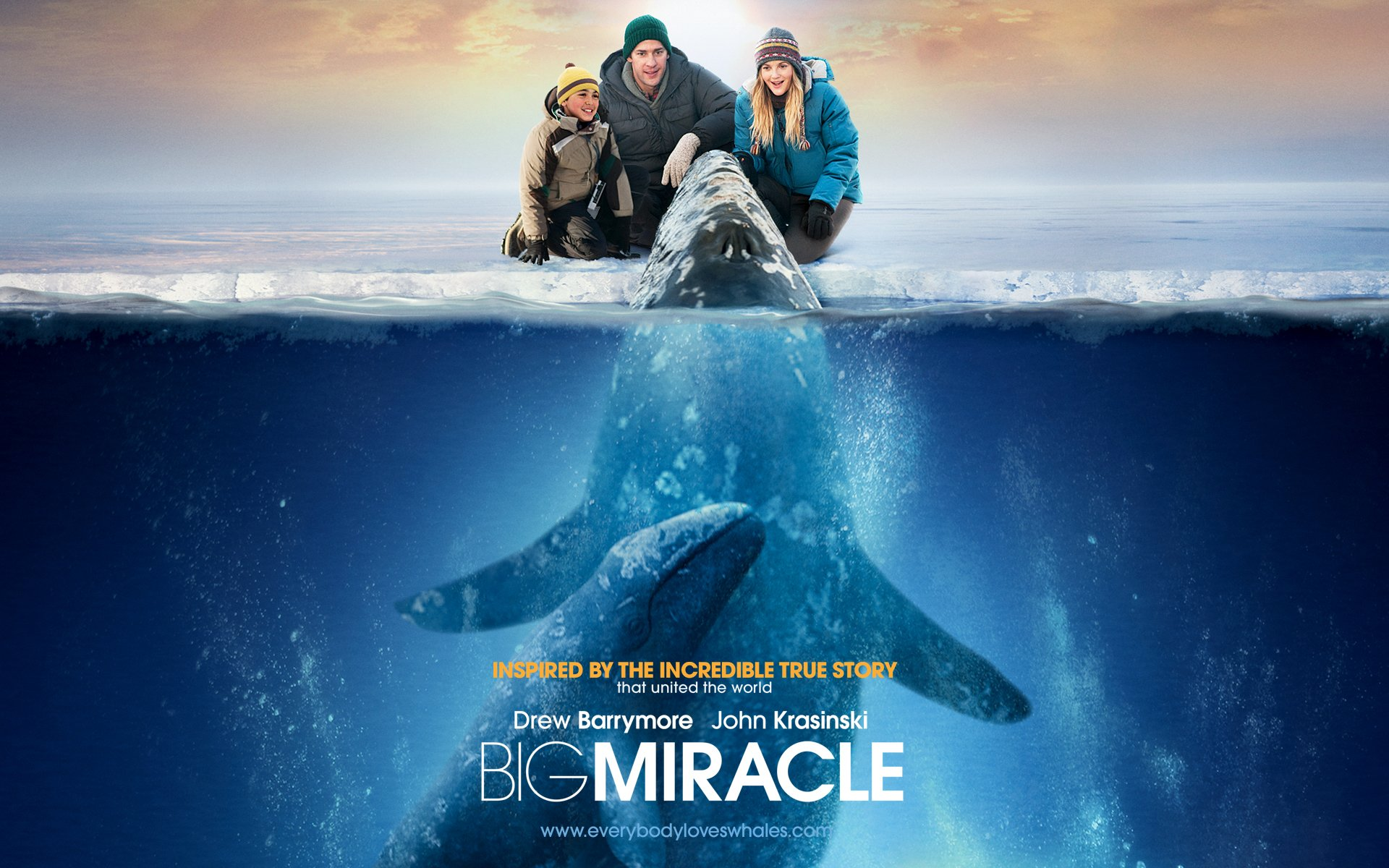 Big Miracle HD Wallpaper   Background Image   1920x1200   ID