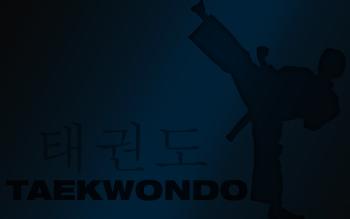 HD Wallpaper | Background ID:286391