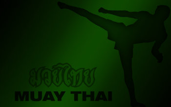 Sports - Martial Arts Wallpapers and Backgrounds ID : 287223