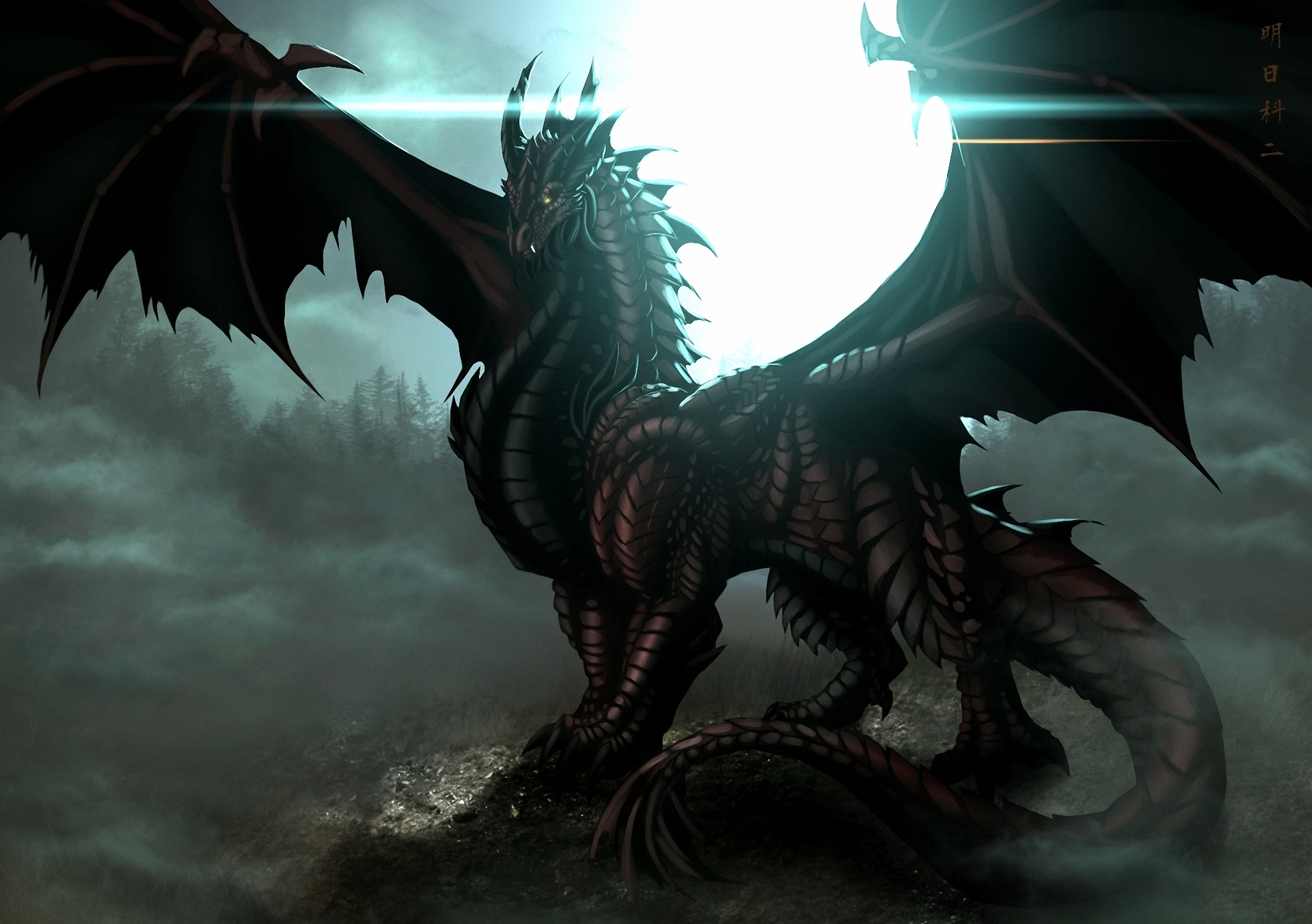 The Black Dragon Full HD Wallpaper And Background Image