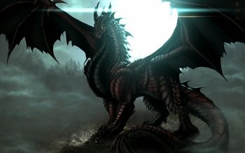 Fantasy - Dragon Wallpapers and Backgrounds ID : 288653