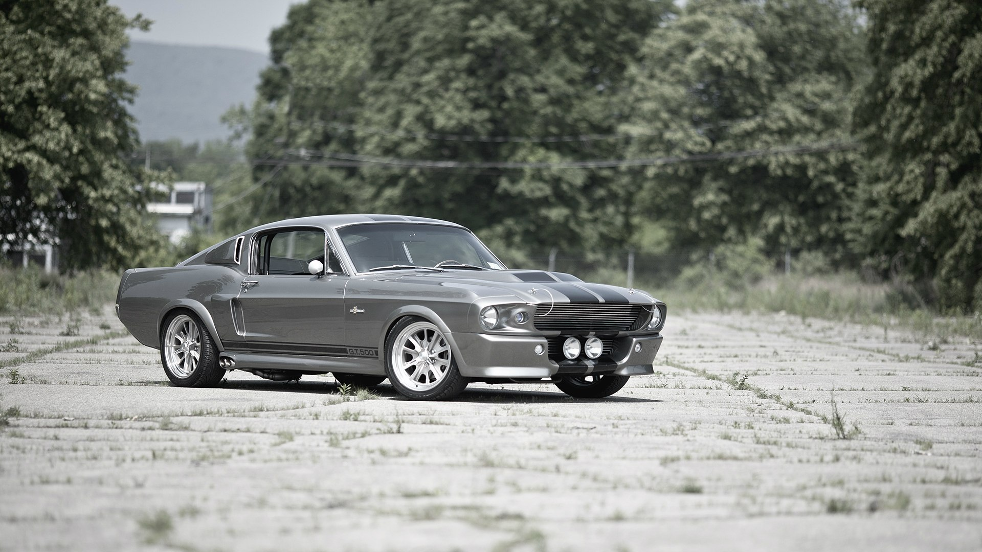 vehicles ford mustang wallpaper