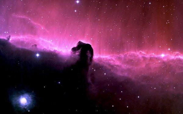 Sci Fi Nebula Horsehead Nebula HD Wallpaper   Background Image
