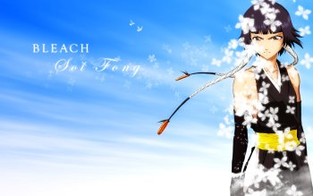 Anime - Bleach Wallpapers and Backgrounds ID : 293193