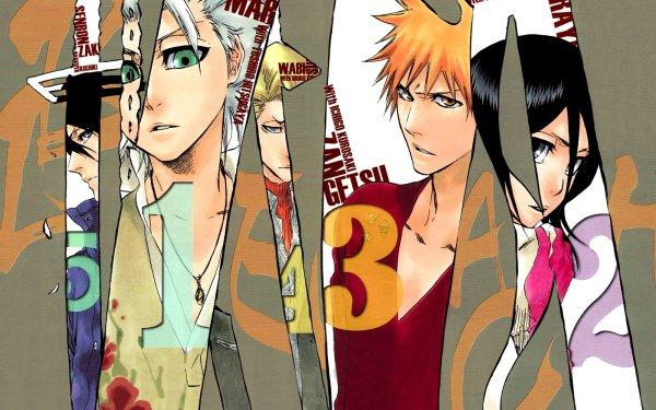 Anime Bleach Ichigo Kurosaki Rukia Kuchiki Tōshirō Hitsugaya Byakuya Kuchiki Izuru Kira HD Wallpaper   Background Image