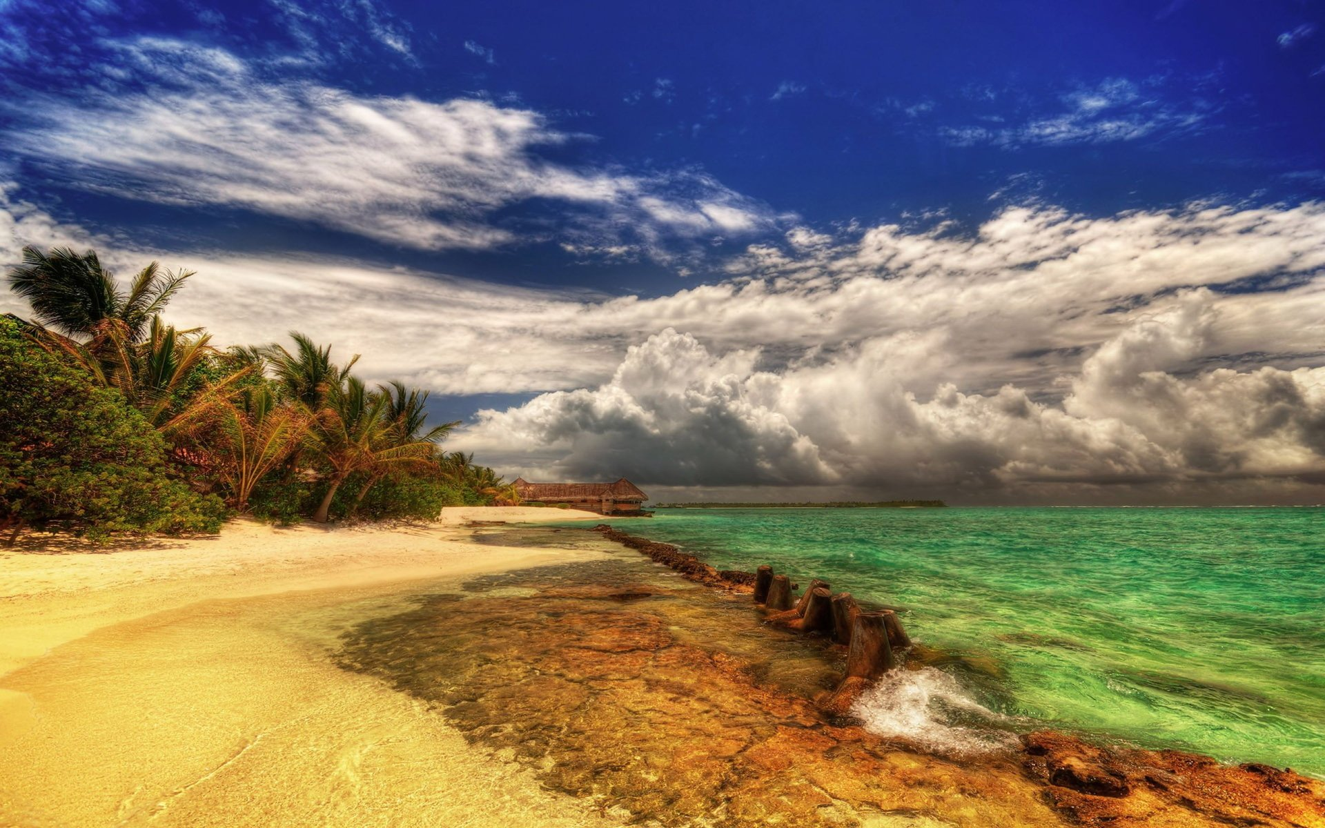 Photography - HDR  Beach Cloud Ocean Water Tree Wallpaper