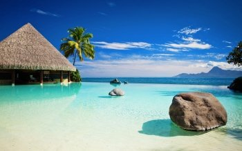 Fotografie - Tropical Wallpapers and Backgrounds ID : 300213