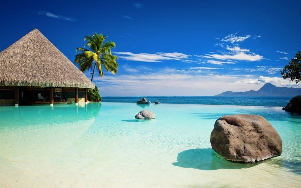 Photography Tropical Ocean Water Palm Tree Tree Hut HD Wallpaper | Background Image
