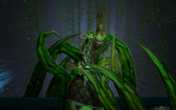 Video Game World Of Warcraft Warcraft Druid HD Wallpaper   Background Image