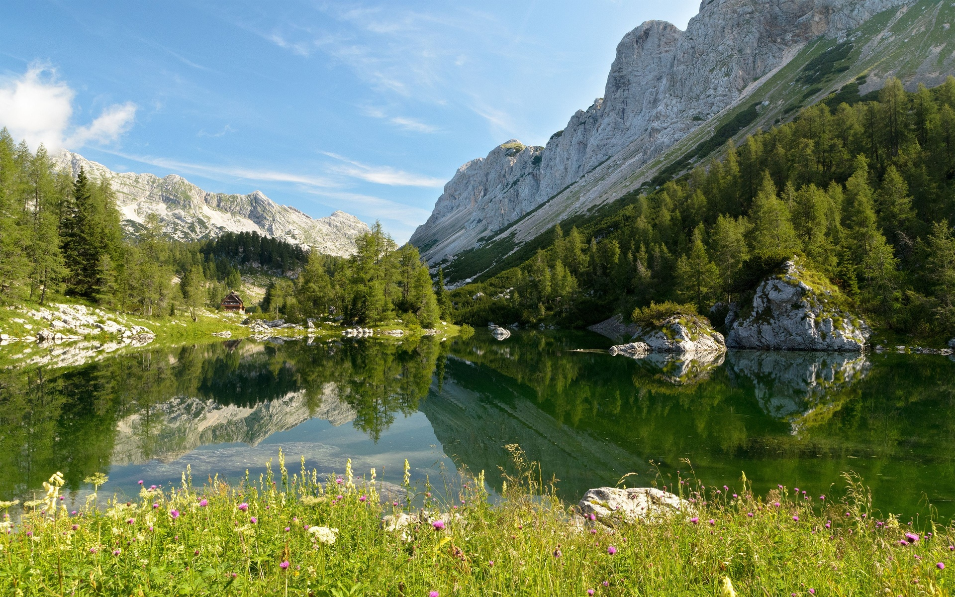 Earth - Reflection  Landscape Mountain Scenic Forest Lake Wallpaper