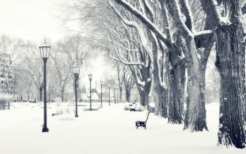 Photography - Winter Wallpapers and Backgrounds ID : 305983