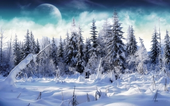 Earth - Winter Wallpapers and Backgrounds ID : 40503