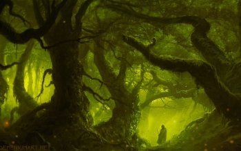 Fantasy - Forest Wallpapers and Backgrounds ID : 434777
