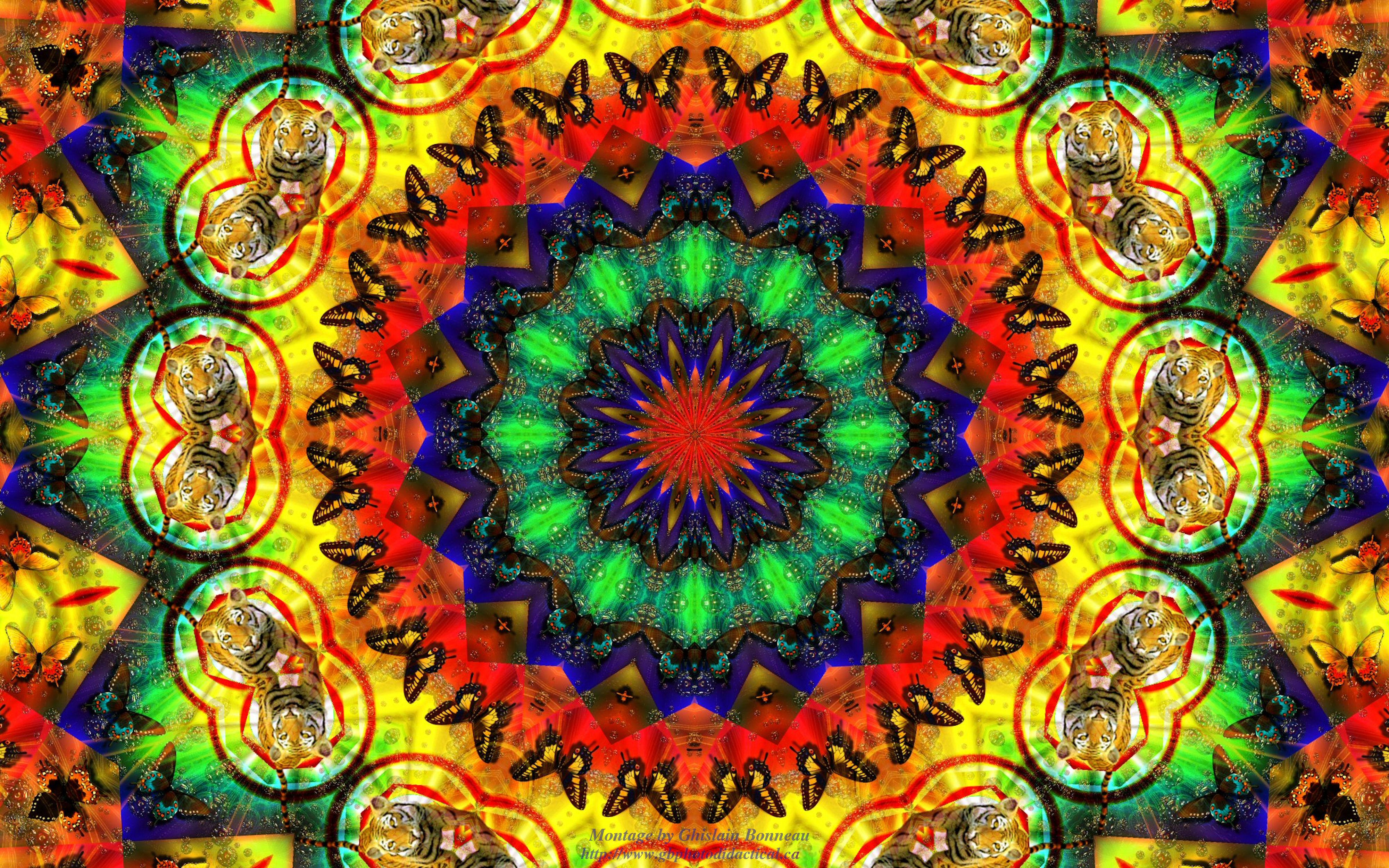 Keleidoscope 4k ultra hd wallpaper and background image 4000x2500 abstract kaleidoscope keleidoscope wallpaper voltagebd Choice Image