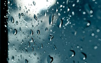 Fotografie - Raindrop Wallpapers and Backgrounds ID : 437881