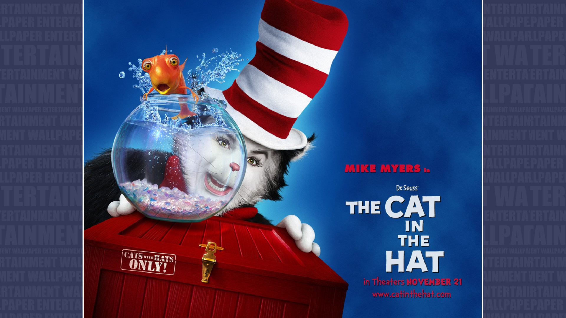 dr seuss the cat in the hat hd wallpaper background