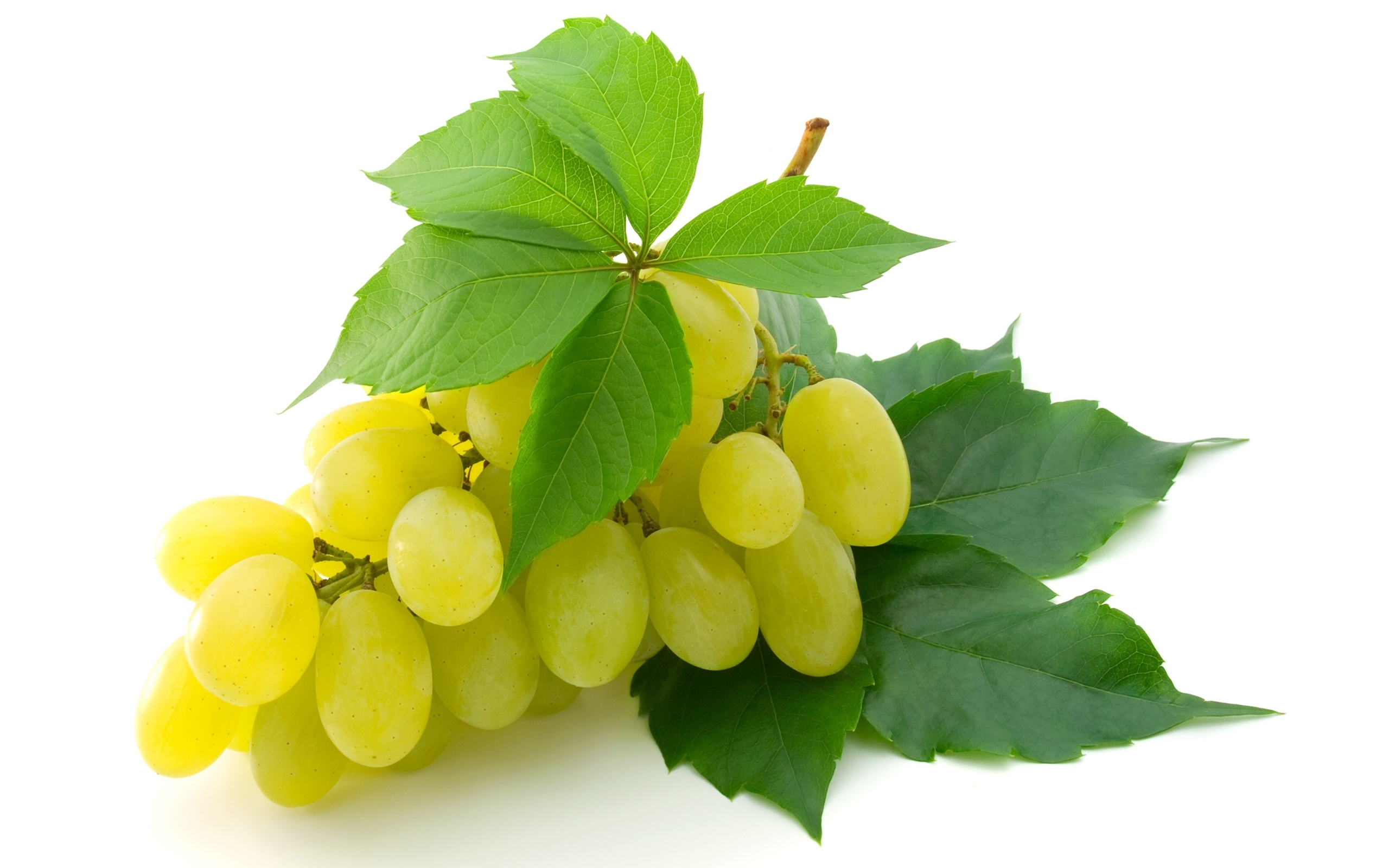 Grapes Full HD Wallpaper and Background | 2560x1600 | ID ...